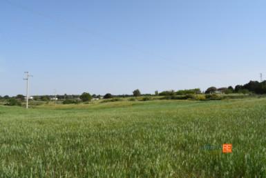 lamia-con-terreno--vendita-locazione-aste-giudiziarie-appartamenti-case-ville-trulli-casali-masserie-magazzini-depositi-terreni-beni-immobili-mediareimmobiliare