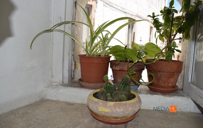 salotto-compravendita-locazione-aste-giudiziarie-appartamenti-case-ville-trulli-casali-masserie-magazzini-depositi-terreni-beni-immobili-mediareimmobiliare