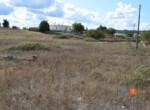0 5 terreno-compravendita-locazione-aste-giudiziarie-appartamenti-case-ville-trulli-casali-masserie-magazzini-depositi-terreni-beni-immobili-mediareimmobiliare