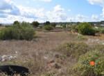 2 terreno-compravendita-locazione-aste-giudiziarie-appartamenti-case-ville-trulli-casali-masserie-magazzini-depositi-terreni-beni-immobili-mediareimmobiliare