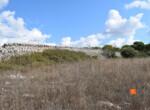 4 terreno-compravendita-locazione-aste-giudiziarie-appartamenti-case-ville-trulli-casali-masserie-magazzini-depositi-terreni-beni-immobili-mediareimmobiliare